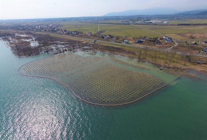 びわ湖地区 湖西工区ヨシ帯造成その2工事